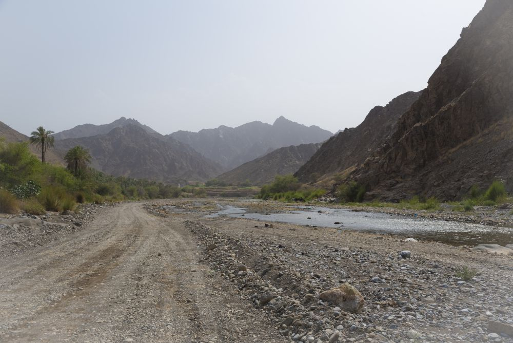 View from the Wadi
